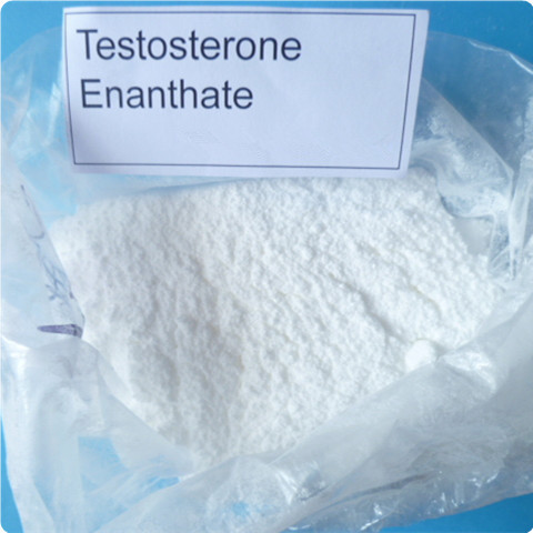 Testosterone Enanthate Raw Steroid Powders White To Yellowish - White Crystalline